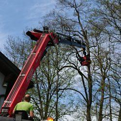 Grünschnitt Mondseeland Baumschneiden 6 kompostieren.at