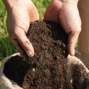Kompost Bio kaufen komostieren.at